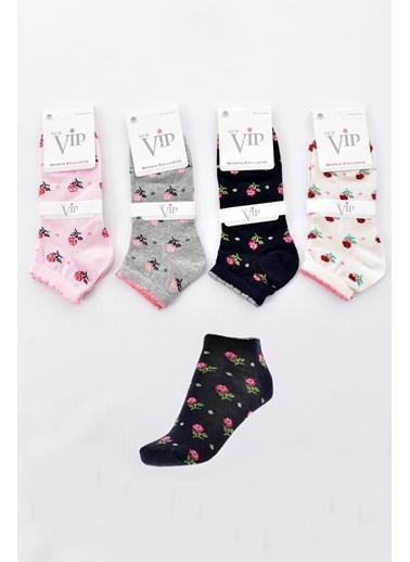 Pemilo Bayan 12 Çift Karışık Renk Patik Çorap KARIŞIK RENK Renkli
